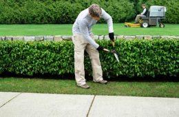 outils-entretien-jardin