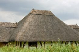 thatched_roof_thatch_roof_thatch_thatched_roof_close_up_details_image-1023379.jpg!d