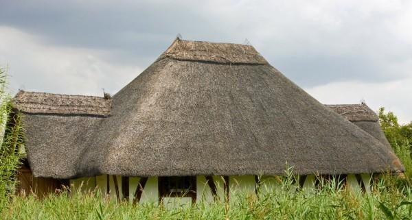 thatched_roof_thatch_roof_thatch_thatched_roof_close_up_details_image-1023379.jpg!d