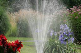 garden-2388292_960_720