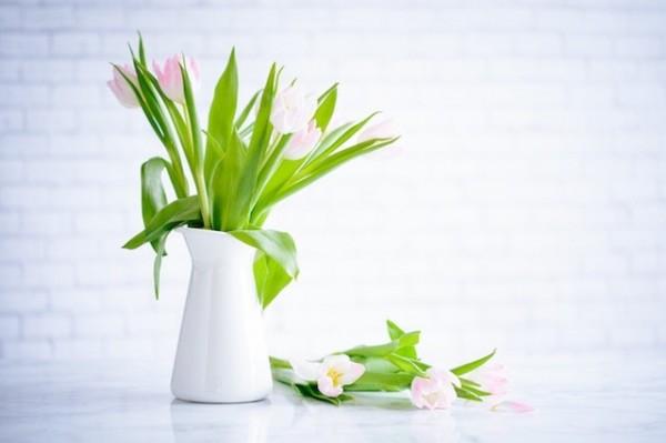 Décoration intérieur: Quelles fleurs choisir?
