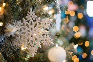 tree-branch-winter-flower-holiday-christmas-1180043-pxhere.com