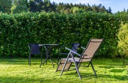 stay-in-the-garden-3394611_640
