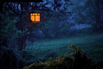 Quelle lumière extérieure choisir pour son jardin