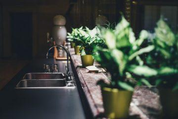 cuisine évier pot fleur