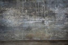 wall-872826_1280