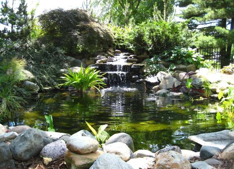 Bassin poisson avec cascade - Photo de bassin de jardin avec cascade ...