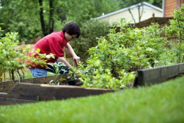 cute-young-boy-gardening-in-his-home-backyard