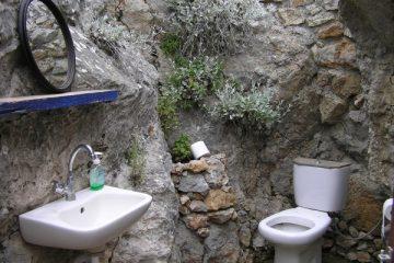 water-flower-rustic-soil-toilet-sink-1104720-pxhere.com