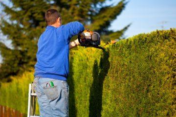 jardinier-professionnel