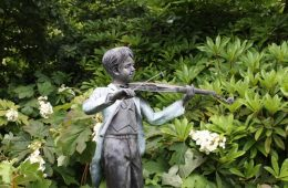 statut-violon